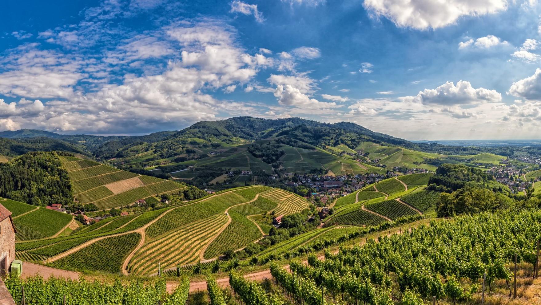 Panoramablick auf Durbach